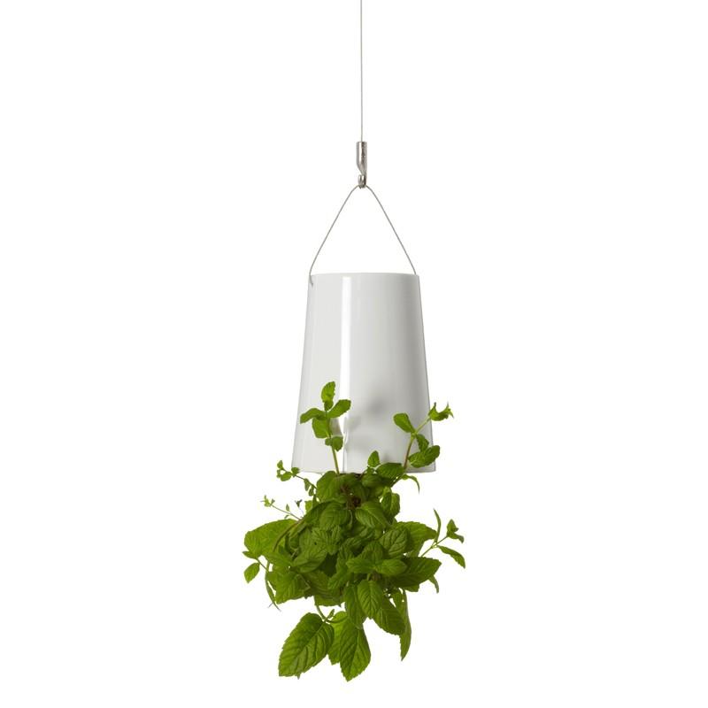 boskke sky planter mini boskke superstudio. Black Bedroom Furniture Sets. Home Design Ideas