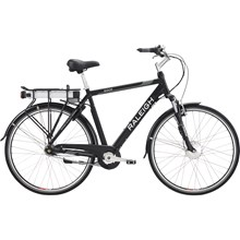 Raleigh Sidor Power 11,6AH