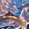 Tivoli LED StringLight, Copper, 100LED, WW, 1BX
