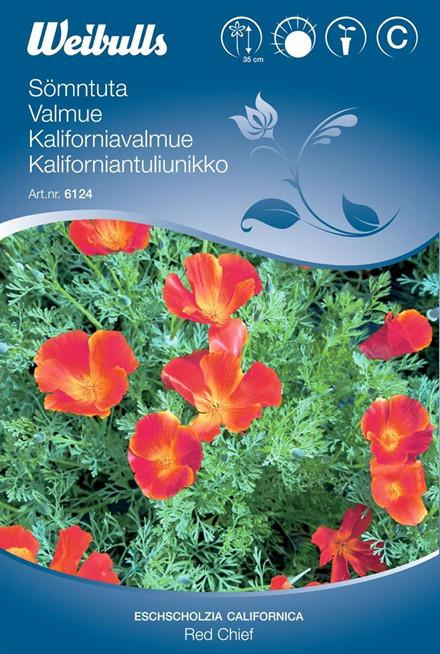 Guld-Valmue - Eschscholzia californica - Red Chief - Frø (W6124)