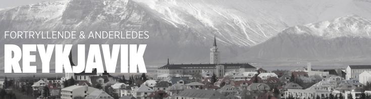 Studierejser og grupperejser til reykjavik alfa travel for Iceland torrevieja