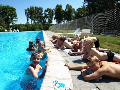 Skandinavisk Dyrepark eller Ree Park swinger historier