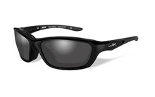 BRICK Polarized Smoke Grey<br />Gloss Black Frame