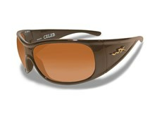CELEB Fade Brown<br />Metallic Brown Frame