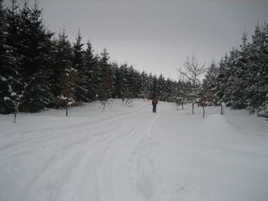 Vinter_p__campingpladsen_024.jpg