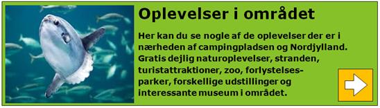 Visit_nordjylland_attraktioner_boks.png