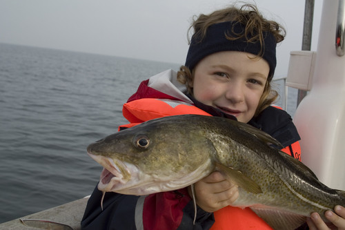 Fiskeri i Danmark