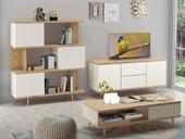 Wohnzimmer-Set ANNE II aus Spanplatte foliert in weiß/eiche