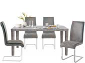 Essgruppe ALEX 160x90 cm mit Freischwinger Stühle in grau