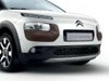 Diffuser forkofanger C4Cactus