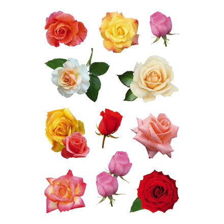 HERMA Decor Stickers rose blossoms 3 sheets