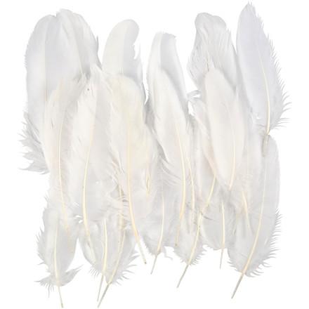 Indianerfjer cirka 15 cm hvid - 350 stk.