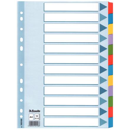 Karton faneblad Esselte Mylar A4 1-12 - farvede faner med forside