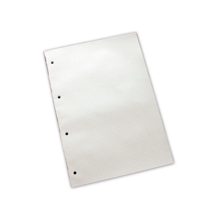 Skrive blok A4 Ternet med 4 huller - 100 ark