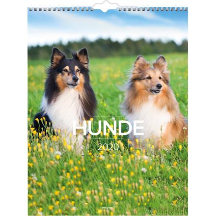 Vægkalender Hunde 30x39cm 20 0663 20