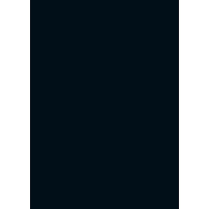 Büngers Cardboard 70x100 300gr  black