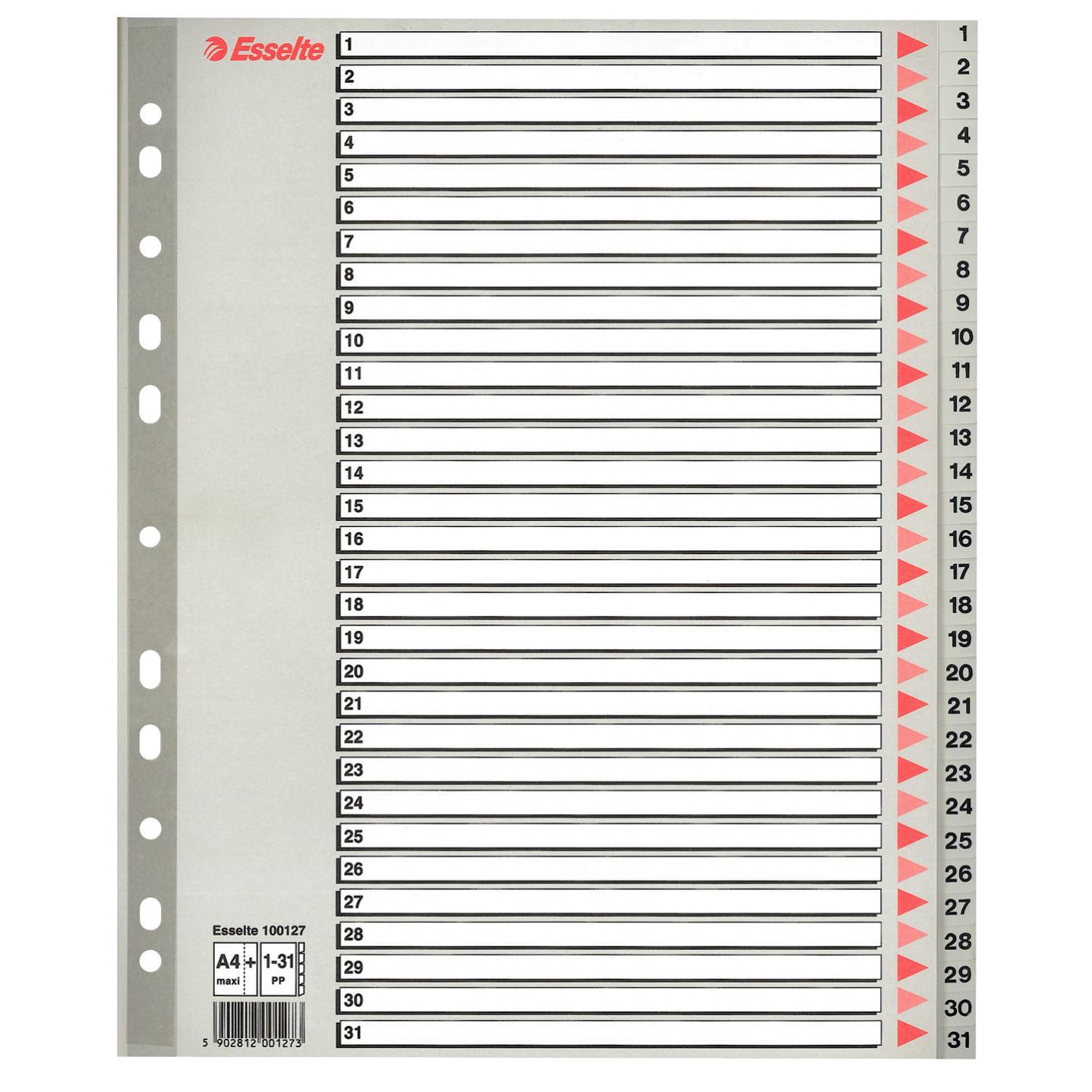 Faneblade A4 maxi 1-31 Esselte - grå plastfaner med kartonforside