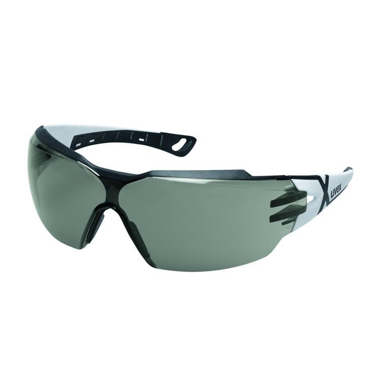 Beskyttelsesbrille, Uvex Pheos cx2, grå, one size