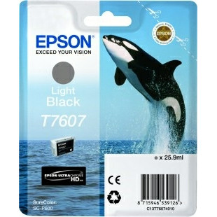 Epson T76074010 Light Black Ink Cartridge
