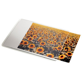 Esselte Mouse pad Personal Transparent
