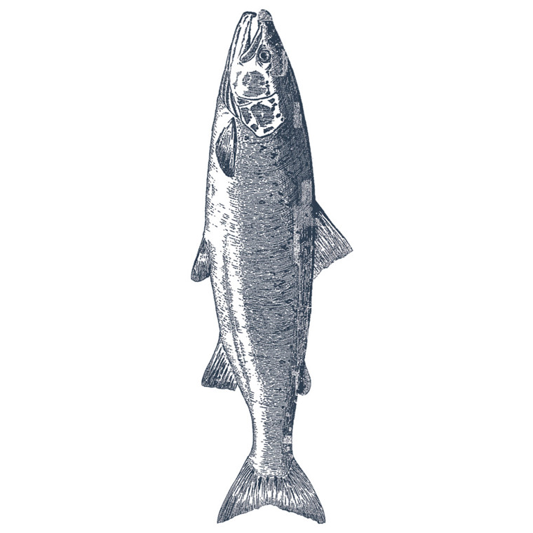 Frokostserviet, ASP-Holmblad, 3-lags, 1/8 fold, 33x42cm, flerfarvet, fisk