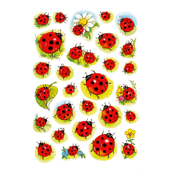 HERMA Decor Stickers ladybirds & flowers 3 sheets