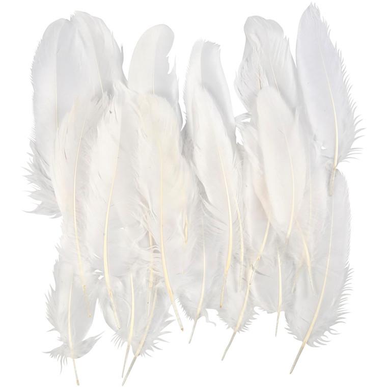 Indianerfjer cirka 15 cm hvid - 70 stk.