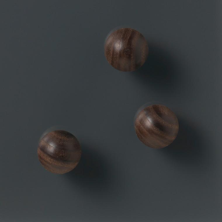 Magnet rund Naga valnød Ø2cm superstrong sæt af 3