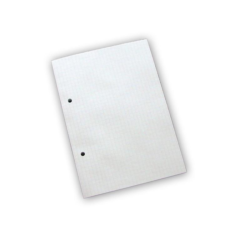 Standardblok - A5 Kvadreret med 2 huller - 100 ark