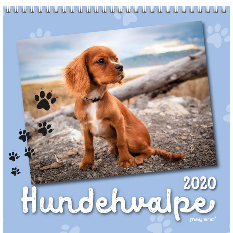 Vægkalender Hundhvalpe 16x32cm 20 0664 10