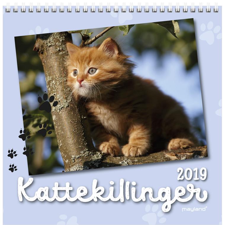 Mayland Vægkalender Kattekillinger 16 x 16 cm - 19 0664 00