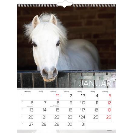 Vægkalender Heste 30x39cm 20 0663 10