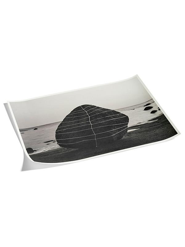 Plakat Anna Reivilä - 1 black fra Hay