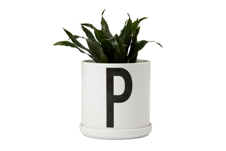 Plant Pot - P