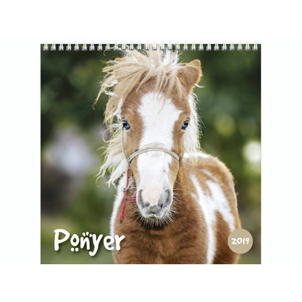 Vægkalender Ponyer 16x16cm 19 0664 30