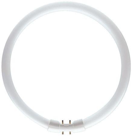 Lysrør tl5 circular 60w/830 primær
