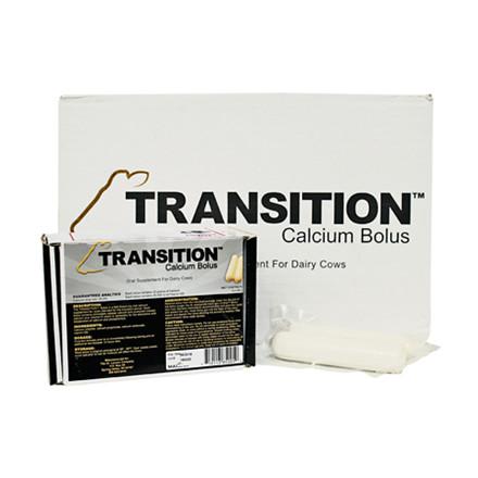48 STK TRANSITION BOLI, 176 GRAM