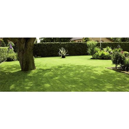 Græsfrø Plæne Shadow 5 Kg
