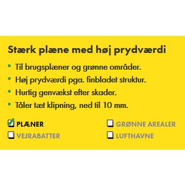 Premium Plænegræs 5 Kg