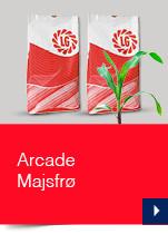 Arcade Majsfrø