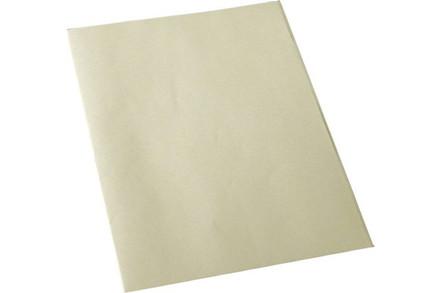 Regnskabspapir/konceptpapir