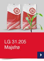 LG 31.205 Majsfrø
