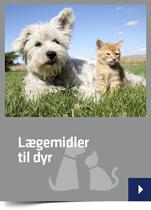 Lægemidler til dyr