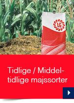 Tidlige / Middeltidlige majssorter
