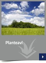 <b>Planteavl</b>