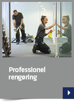 Professionel rengøring