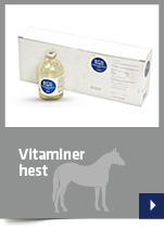 Vitaminer hest