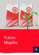 Yukon Majsfrø