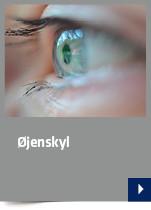 Øjenskyl