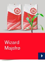Wizard Majsfrø